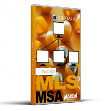 MAXON Service Agreement - MSA - total fee (24 months)